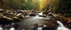 A Virginia Fall Drive