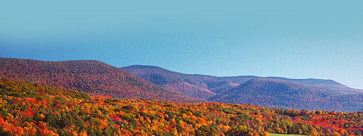 Find Resorts in the Berkshires