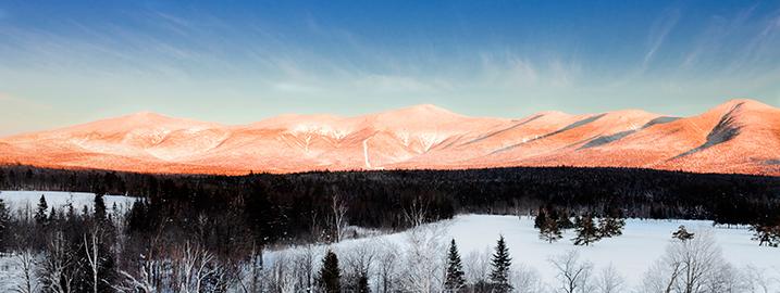 Life Free and Ski - Skiing